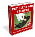 Pet First Aid - Know Dog Emergency Health Care for Dog Safety